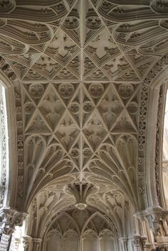 Vaulting of the Humphrey chantry  The 15th-century chantry of Humphrey, Duke of Gloucester stands next to the shrine of St Alban and has a fantastic vault...