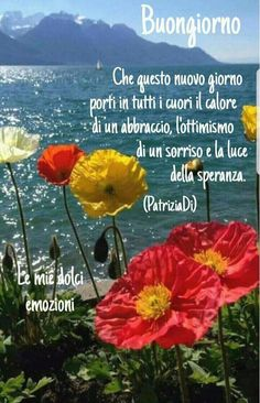 Buongiorno Start The Day, Hello Everyone, Good Morning, Madonna, Facebook, Messages, Frases, Canvas, Happy Brithday