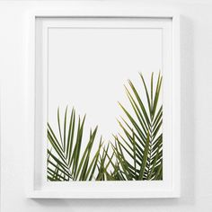 Palm Art, Tropical Leaf Art Print, Green Wall Prints, Leaf Art Print, Palm Leaves Wall Art, Leaf Wall Prints, Tropical Print, Framed Artwork by MelindaWoodDesigns on Etsy https://www.etsy.com/listing/519223793/palm-art-tropical-leaf-art-print-green