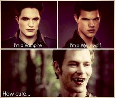 The vampire diaries versus twilight lol Vampire Diaries Memes, Vampire Diaries Damon, Serie The Vampire Diaries, Vampire Diaries Poster, Vampire Daries, Vampire Diaries Wallpaper, Vampire Diaries The Originals, Vampire Diaries Fashion, Klaus The Originals