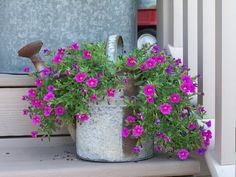 Flower Planters n Containers :: rusty Watering Can by luvs2click image by sangaree_KS - Photobucket