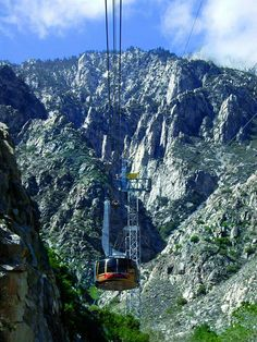 Palm Springs Aerial Tram Celebrating 50 years!