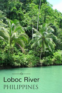 The best things to do in Bohol, Philippines includes attractions like the Chocolate Hills, floating down the Loboc River and seeing the tiny tarsiers. Philippines Travel Guide, Bohol Philippines, Philippines Culture, Philippines Vacation, Cambodia Beaches, Floating Restaurant, Adventures Abroad, Cultural Dance, Viajes