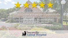 Another 5 Star Review! | The veterinarians at Tuscawilla Animal Hospital care about cats and dogs too! Call us today to schedule an appointment today! #dogs #pets #cats Veterinarians, Appointments, Schedule, Dog Cat, How To Plan, Star, Pets, Animals, Timeline