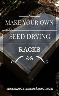 Build Herb or Seed Drying Rack DIY Project Homesteading - The Homestead Survival . Herb Drying Racks, Drying Herbs, Garden Projects, Diy Projects, Vegetable Rack, Growing Seedlings, Fruit Storage, Bean Seeds, Survival Skills