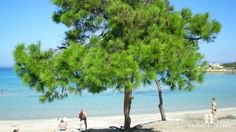 #Vourvourou in #Halkidiki #Greece. More info at http://bit.ly/1AxZpIj