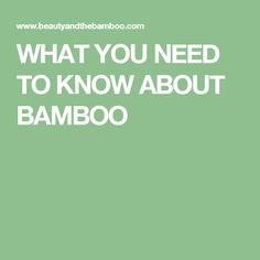 WHAT YOU NEED TO KNOW ABOUT BAMBOO