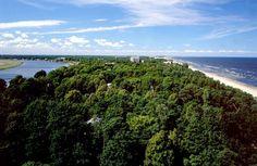 Jurmala - European Best Destinations #Jurmala #Europe #tourism #travel #ebdestinations @ebdestinations #forest