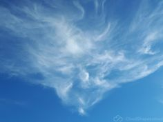 Image Face of the wind in CloudShapes's images album