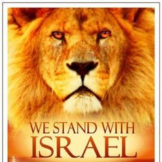 Pray for the Peace of Jerusalem. Stand with Israel. I agree . God's heart yearns for Israel, Psalm 122, Psalms, Deuteronomy 6, Isaiah 41, Cultura Judaica, Lion Of Judah, Prayer Warrior, Lord And Savior, King Of Kings