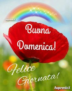 Buona Domenica Sunday Wishes, Happy Sunday, Good Morning, Christmas Ornaments, Instagram Posts, Carrie, Mary, Good Morning Wishes, Thanks