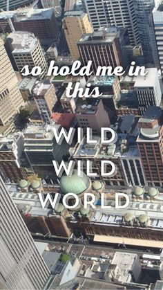 bastille wild world about