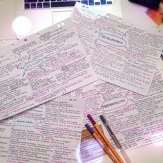*Study Diary*