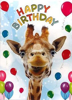 24 trendy Ideas funny happy birthday wishes animals Giraffe Happy Birthday, Funny Happy Birthday Wishes, Birthday Card Sayings, Happy Birthday Images, Happy Birthday Greetings, Animal Birthday, Birthday Pictures, Birthday Quotes, Funny Birthday