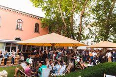 Fancy Drinks, Urban City, Street Food, Dolores Park, Garden, Travel, Garten, Viajes, Lawn And Garden