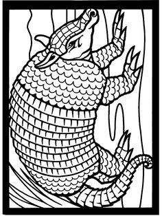 54 Best Animals Images In 2017 Coloring Pages Animal