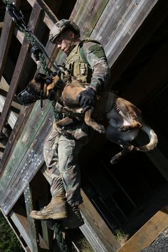 A Multi-Purpose Canine handler, with U.S. Marine Corps Forces Special Operations Command, fast-ropes with his canine aboard Stone Bay, Oct. 1, 2014. As MARSOC continues to demonstrate their capabilities and versatilities, MPC handlers with the command are preparing themselves and their canines for new areas of operation they will be deploying to. (U.S. Marine Corps Photo by Cpl. Steven Fox)