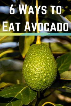 6 Ways to Eat Avocado
