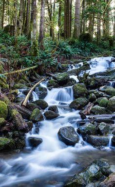 82 Best Washington State Travel Images Washington State