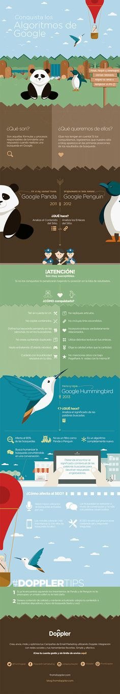 #Infografia #SEO Los Algoritmos de Google qué son, para qué sirven. #TAVnews