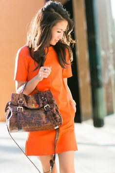 Orange Crush :: Shift dress