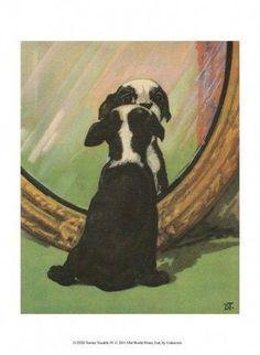 Boston Terrier Puppy - Dog Print - Diana Thorne for sale online Terrier Breeds, Terrier Puppies, Bull Terrier Dog, Dogs And Puppies, Doggies, Bulldog Puppies, Dog Breeds, Baby Boston Terriers, Boston Terrier Art
