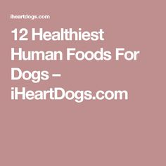 12 Healthiest Human Foods For Dogs – iHeartDogs.com