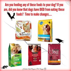 Read this to learn more and where to go from here: http://www.holisticandorganixpetshoppe.com/how-and-what-to-feed-on-a-raw-diet.html