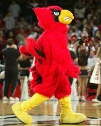 Cardinals- University of Louisville