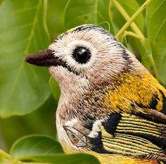 regulus+bird+.+brooch+.+animal+.+handembroidered+.+felt+by+cOnieco,+zł300.00