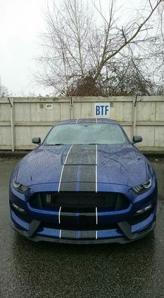 Nice Ford 2017: Ford Mustang Shelby GT350 in Lightning Blue....  dream cars