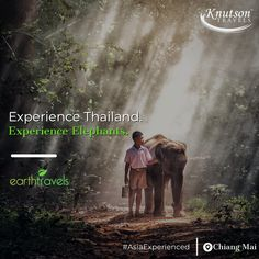 Experience the amazing cultural respect that the Thai people have for elephants in our Thailand tours!