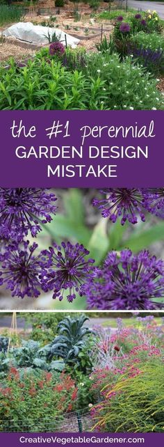 Don't make this common mistake in your flower garden!