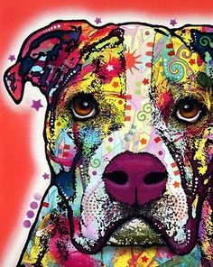 """#American #bulldog 8"""" x 10"""" #print - by dean russo - new - free shipping,  View more on the LINK: http://www.zeppy.io/product/gb/2/301831308407/"""