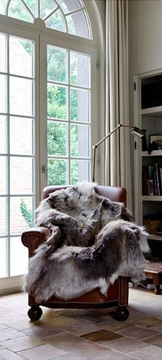 leather chair and hide throw, I'd love to read here