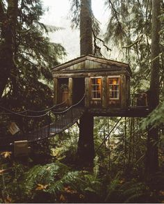 Cozy treehouse in the woods Treehouse Cabins, Building A Treehouse, Treehouses, Beautiful Tree Houses, Cool Tree Houses, Cabins In The Woods, House In The Woods, Fall City, Tree House Designs