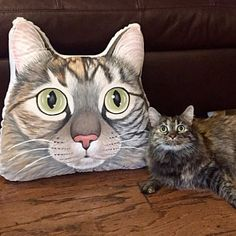 It all started with a cat Custom pet portraits by ShebboDesign