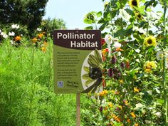 Xerces Society Pollinator Habitat Sign for your bee-friendly garden.