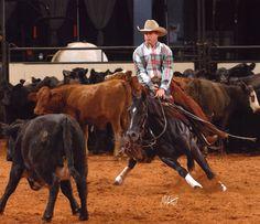 Ride a true cutting horse!