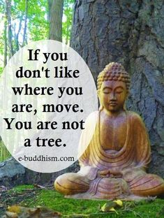 Image result for tiny buddha pics and quotes