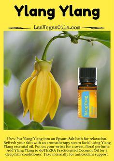 Ylang Ylang  Doterra Essential Oils www.LasVegasOils.com