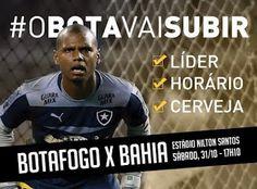 Blog do Felipaodf: Botafogo está pronto pra subir e no sábado duela c...