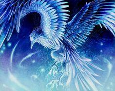 Tattoo bird phoenix mythical creatures 62 New Ideas Mythical Birds, Mythical Creatures Art, Magical Creatures, Fantasy Creatures, Phoenix Artwork, Phoenix Wallpaper, Phoenix Bird Tattoos, Phoenix Tattoo Design, Phoenix Bird Images