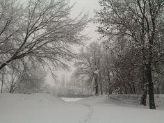 Stopy sněhem zaváté na cestě bílou nicotou 8.3.2016