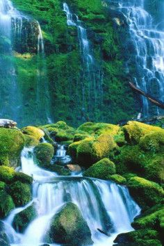 Willamette National Forest offers a varied landscape from high mountains to cascading streams in Oregon.