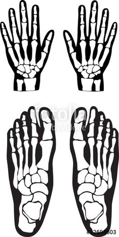 Skeleton - patterns for hands & feet Diy Halloween Decorations, Halloween Themes, Halloween Crafts, Homemade Halloween, Halloween Halloween, Halloween Makeup, Vintage Witch, Vintage Halloween, Foot Skeleton