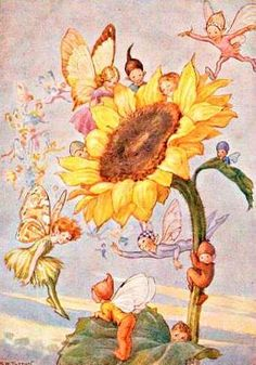 Buy your Sunflower Fairies Vintage Artwork by Vintage Artwork here. Brighten up your girl's room with the Sunflower Fairies Vintage Artwork featuring a slew cheerful fairies. Art Vintage, Vintage Fairies, Vintage Artwork, Vintage Illustrations, Fairy Dust, Fairy Land, Fairy Tales, Forest Fairy, Arte Fashion