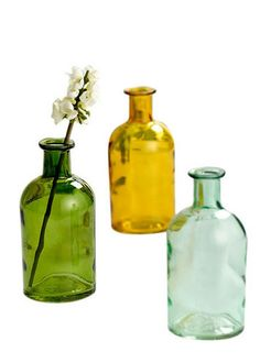 Bottle Bud Vase