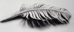 Feather tattoo, sketch