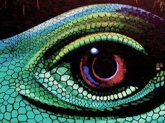 Lizard's eye by Dimascio, via Flickr